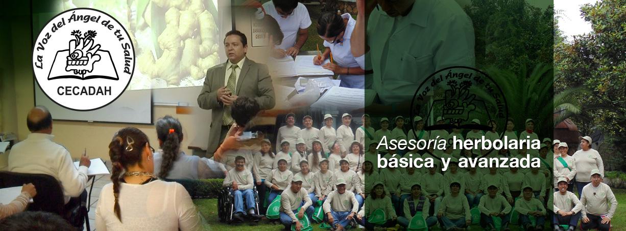 Asesoría herbolaria básica y avanzada en el CCAAH