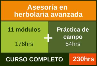 Cursa los 11 módulos más práctica de campo para acreditar la Asesoría en herbolaria avanzada
