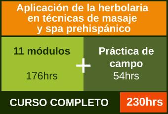 Cursa los 11 módulos más práctica de campo para acreditar la Aplicación de la herbolaria en técnicas de masaje y spa prehispánico